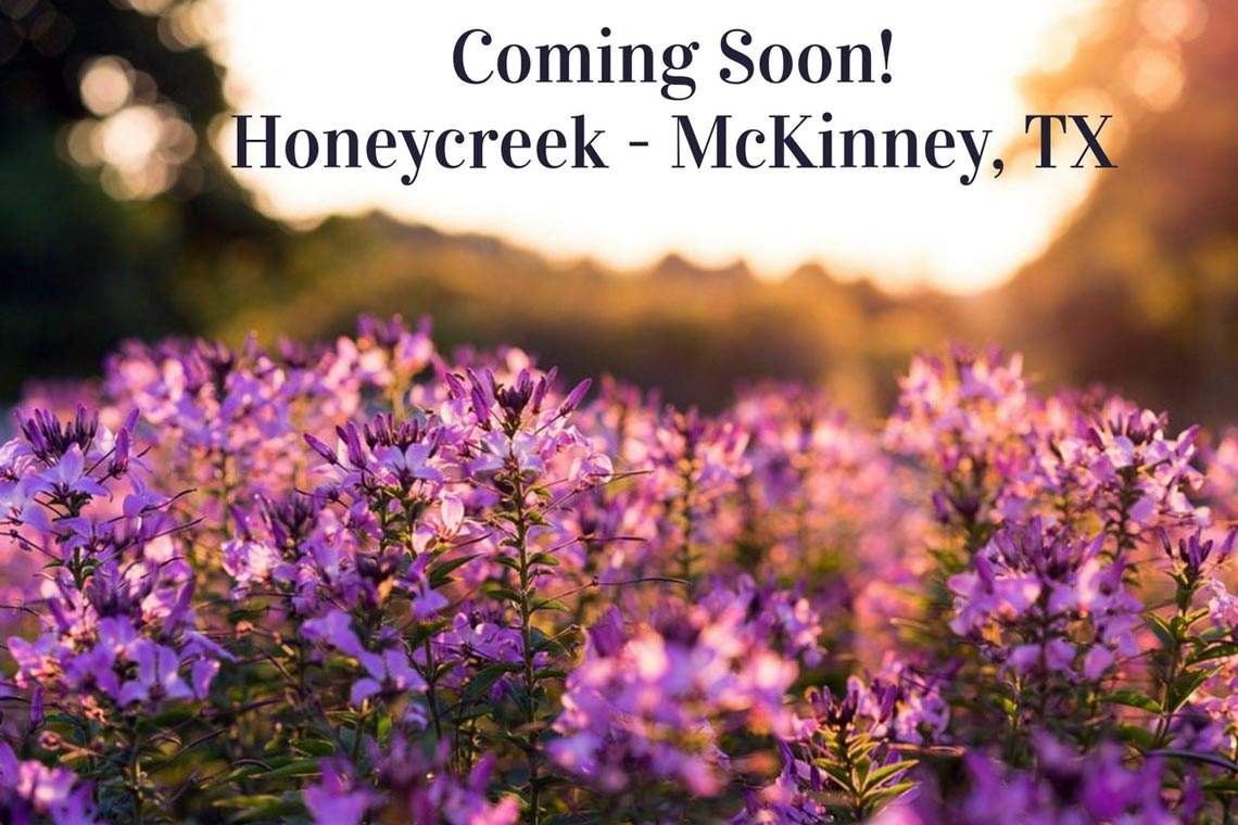 Honeycreek-Neighborhood